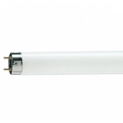 TL-D 36W/765 PHILIPS  Люм.лампа 36W 1200мм